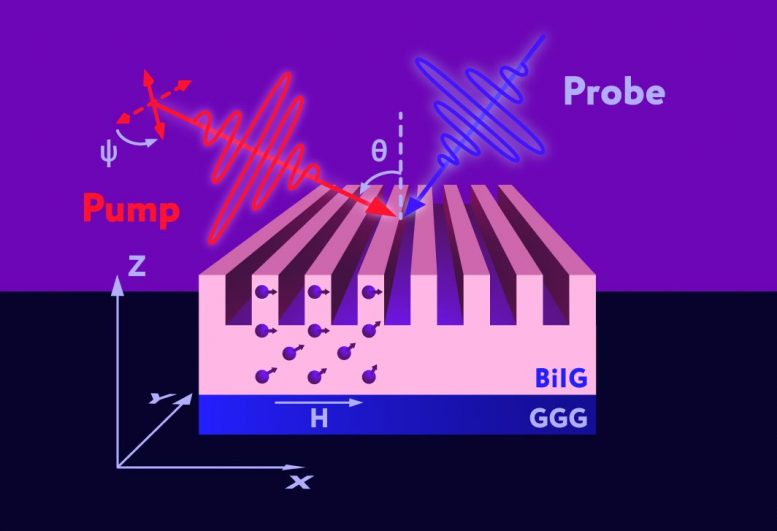 Schematic representation of spin wave excitation by optical pulses. The laser pump pulse generates magnons by locally disrupting the ordering of spins — shown as violet arrows — in bismuth iron garnet (BiIG). A probe pulse is then used to recover information about the excited magnons. GGG denotes gadolinium gallium garnet, which serves as the substrate. Credit: Alexander Chernov et al./Nano Letters