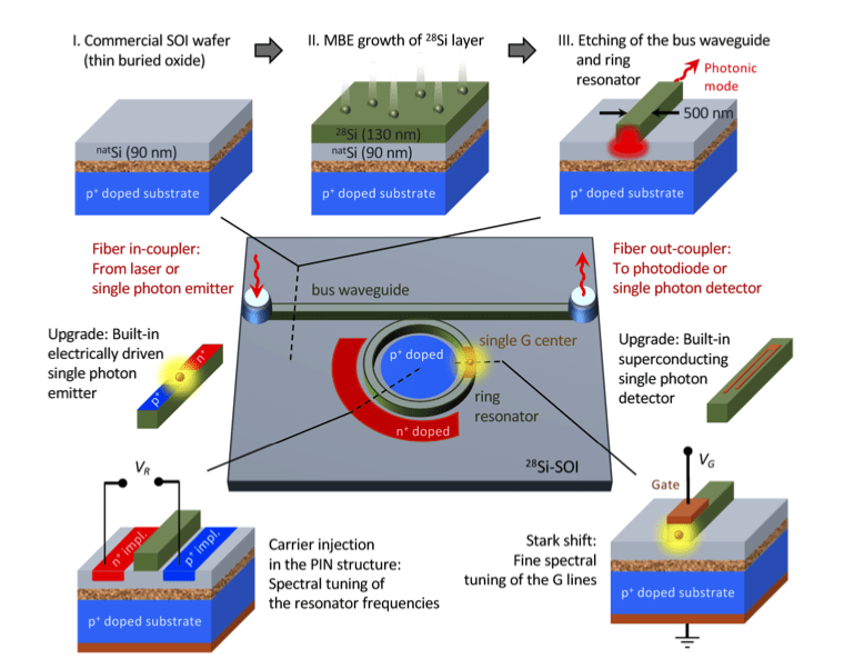 A cartoon of the scalable quantum architecture with a single G center in an isotopically purified 28Si-SOI photonic structure. Possible upgrades include built-in electrically driven single-photon emitters and superconducting single-photon detectors integrated on the same chip.