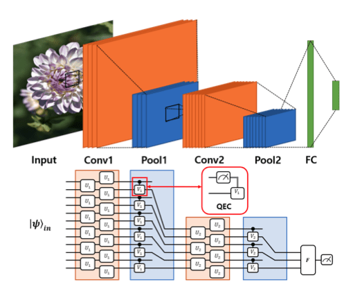 Simple example of CNN and QCNN. QCNN, like CNN, consists of a convolution layer that finds a new state and a pooling layer that reduces the size of the system.