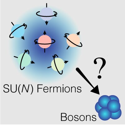 Fermions with different spins (indicated by arrows) behave like bosons in three dimensions when the number of spin components increases. Credit: HKUST