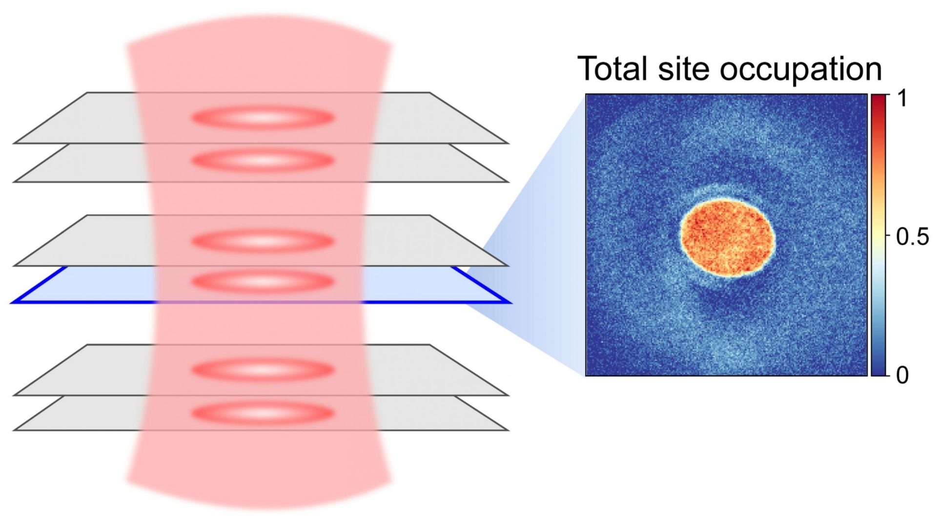 The system: A crystal lattice made of light traps atoms in several bilayer sheets. Tomographic images show the (spin-) densities in a single layer. They provide information about the magnetic ordering of the atoms. The image on the right shows the density of one layer averaged over twelve realizations (orange red). Credit: © Marcell Gall, Nicola Wurz et al./ Nature